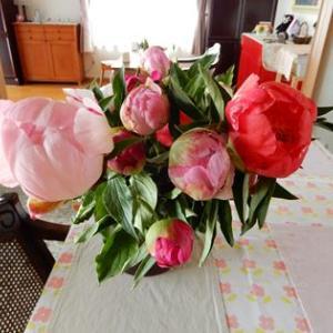芍薬の花束/キャスリーン・モーレー