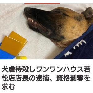 """""""★署名お願いします★福岡・ペットサロンで犬虐待死"""""""