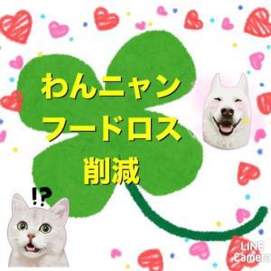 """""""新☆わんにゃんフードロス削減 その2"""""""