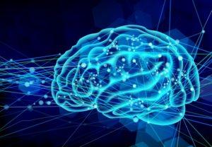 ダウン症者におけるアルツハイマー病がバイオマーカーの変化で予測可能に