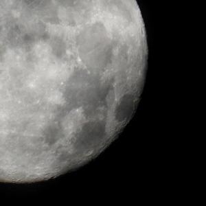 「満月」と「どんどん焼き」と「ツグミ」と・・・