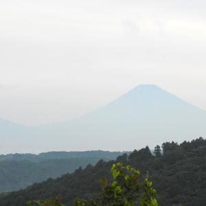 昨日の富士山・・・