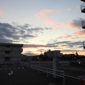 昨日の朝の景色です。