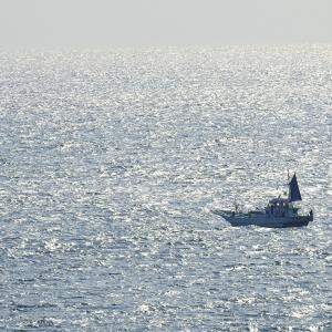 南熱海の朝