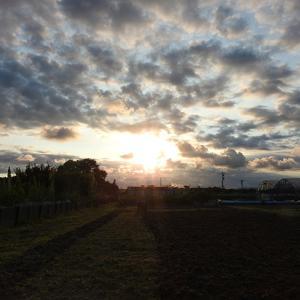 田舎の「空」