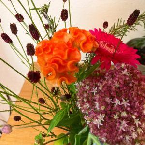 素敵な花屋と出会おう
