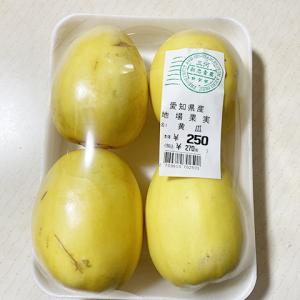 愛知県産 黄瓜(マクワウリ)