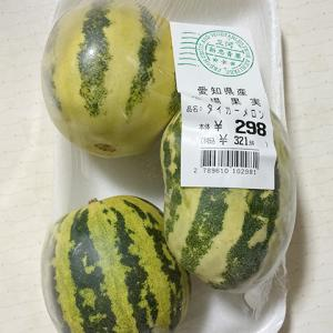 愛知県産 タイガーメロン
