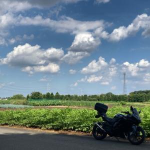 バイク乗りの夏は暑いっ!