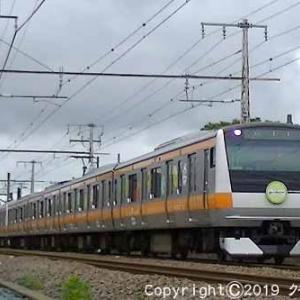 E233系 「東京アドベンチャーラインヘッドマーク付」 羽村~小作
