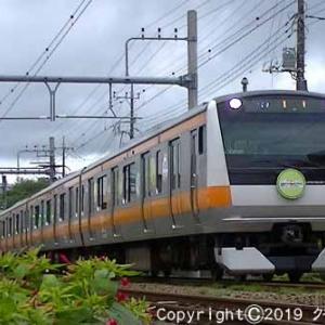 E233系 「東京アドベンチャーラインヘッドマーク付」 牛浜~福生