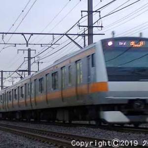 485系リゾートやまどり 快速「やまどり青梅奥多摩号」 福生~羽村