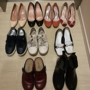 実は、レインシューズを購入してました。現在の靴の総数