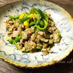 【サクッとできる1品料理】~豚肉とゴーヤとパプリカの塩麹炒め~