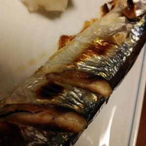 ぷりっと嬉しい秋刀魚とチキンカツ
