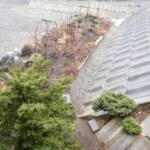 雪が消えた東庭