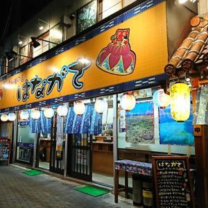 沖縄料理の立ち飲み屋さん!はながさ