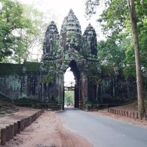 カンボジアのセミの鳴き声