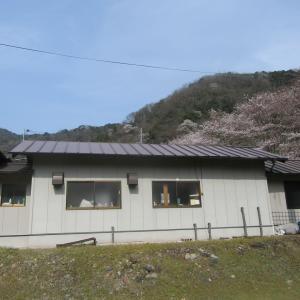 桜マルシェin川戸駅舎のイベント