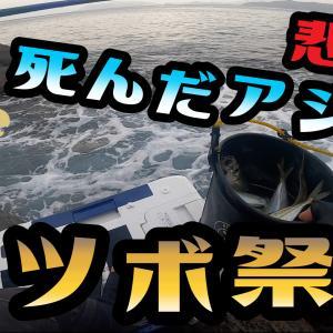 先日の釣行の動画をupしました!アジ活かしクーラーが酸欠で活きアジ全滅!?死にアジでウツボ祭り
