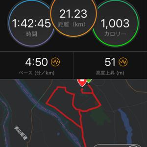 2019 坂東市いわい将門ハーフマラソン ズームフライFKはどうだったでしょうか?