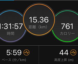ハーフマラソン翌日はセット練ジョグ走ったお(´・ω・`=)