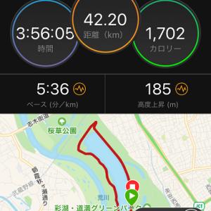 【ウルトラ練】フルマラソンジョグ@彩湖