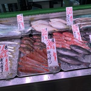 角上魚類に行ってみたのよ(´・ω・`=)