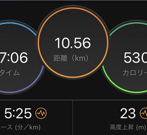 Eペース走はやっぱり大事。と、もっと距離を踏めるようになりたいにゃぁ。