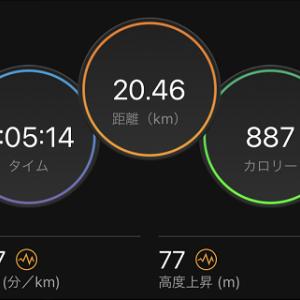 彩湖をあの超有名ランナーさんが走ってたΣ(*´・ω・ノ)ノ