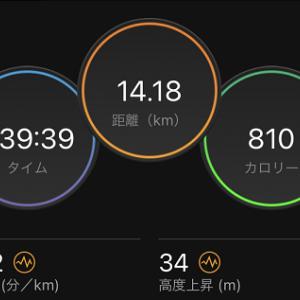 8日ぶりに走れた