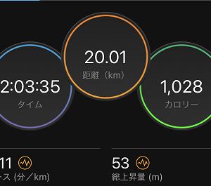久しぶりにノンストップで20km