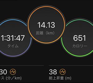 久しぶりの週間100km