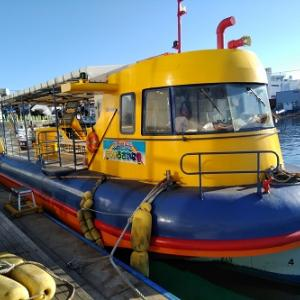 みさきまぐろきっぷの旅② 水中観光船「にじいろさかな号」