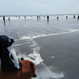 茨城県の大洗海岸にて天然潮干狩り!