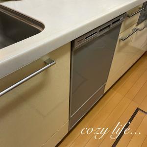 【キッチン】米びつを選ぶポイントと置き場所