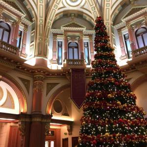 メルボルンで見つかるクリスマスツリー