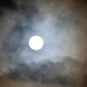 月を見上げる