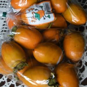秋の味覚の柿と栗