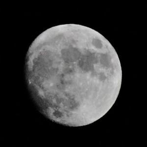昨夜は十三夜・明日は十五夜の満月だ