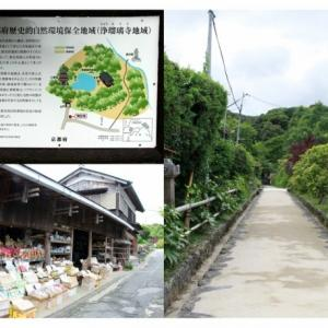 京都南山城の国