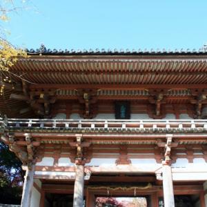 大阪池田・久安寺花の寺