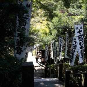 苔の階段 本堂 -杉本寺-