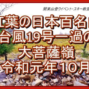 [全山行記録動画] 紅葉の日本百名山 大菩薩嶺 台風19号後 調査登山を兼ねて行って来ました。