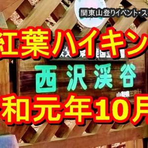 [全山行動画あり]台風後の増水・紅葉の西沢渓谷ハイキング 関東山登りの会 ガイド同行山行 東京神奈川から