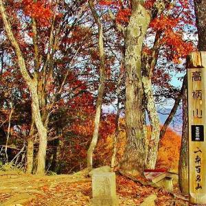 要望により募集2019/11/24(日)紅葉の山梨百名山の高柄山(733m) 初級 関東山登りの会 ガイド同行登山山行