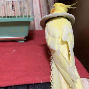 1551:登ったどー!!!