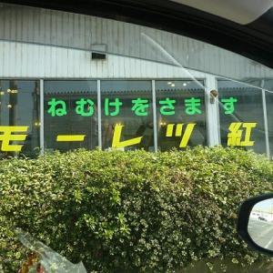 OH~!モーレツ 【お気楽写真館164】