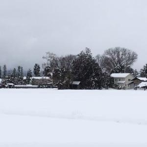春が来たのに、安曇野は大雪。