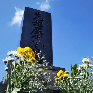 秋田県大館市  にゃごにゃごにゃーご  【全力♥️彼岸】今回の差し色は?